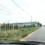 ขายที่ดินสวยสีคิ้ว ราคาถูกมาก เพียง ตาราวาละ1900,-บาท อยู่ชุมชนดี เหมาะสร้างบ้าน กู้ได้สูง  ต.บ้านหัน  อ.สีค้้ว จ.นครราชสีมา
