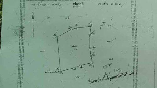 ขายที่ดิน ราคาถูก พื้นที่ EEC ห้วยพลู ต.เกาะขนุน อ.พนมสารคาม จ.ฉะเชิงเทรา